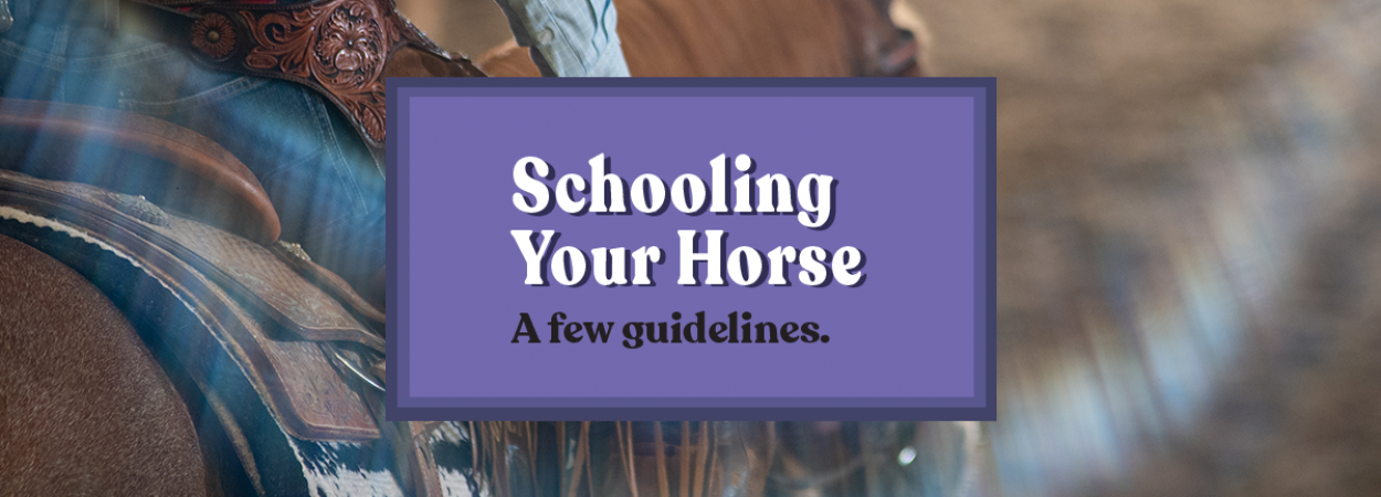 Schooling Your Horse